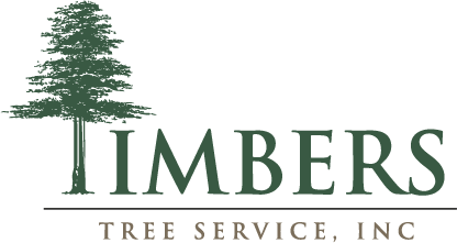 Timbers-Tree-Service-Color